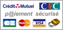 SecureOnlinePayment